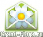 Логотип компании Доставка цветов Гранд Флора (ф-л г.Богданович)